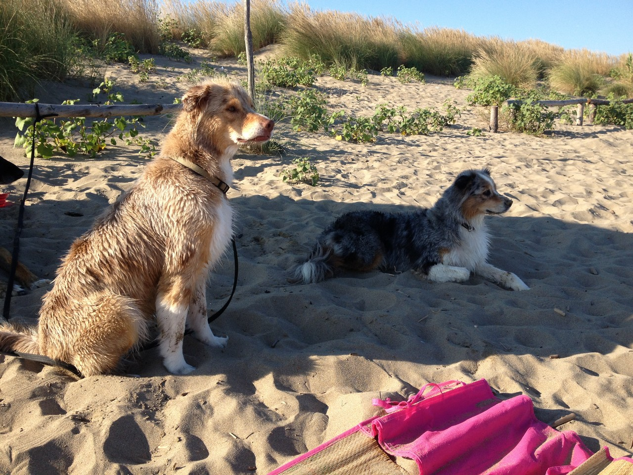 Ab 17Uhr ist der Sand angenehm warm...