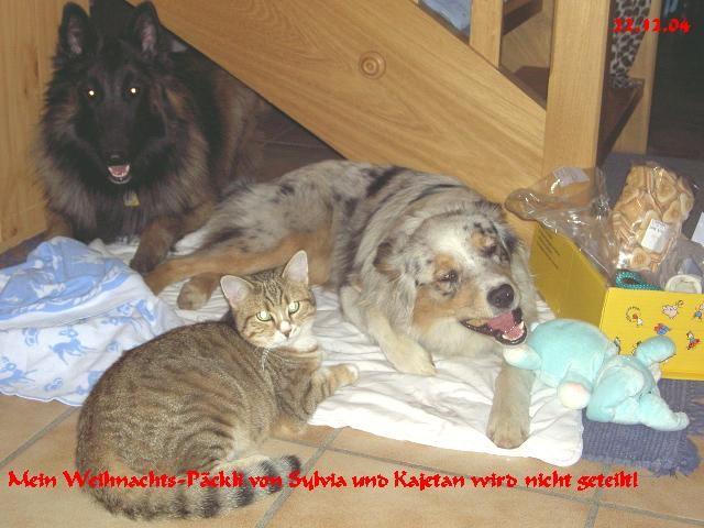 mein Weihnachtspäckli von Silvia und Kajetan wird nicht geteilt!