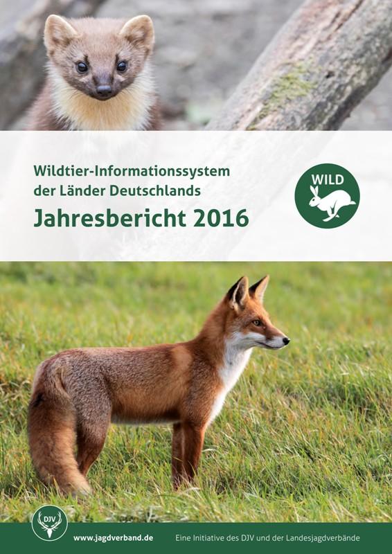 Der umfassende WILD-Bericht 2016 stellt unter anderem neue Daten zur Jagdentwicklung heimischer Raubwildarten, wie Dachs, Iltis und Marder vor.  Quelle: DJV