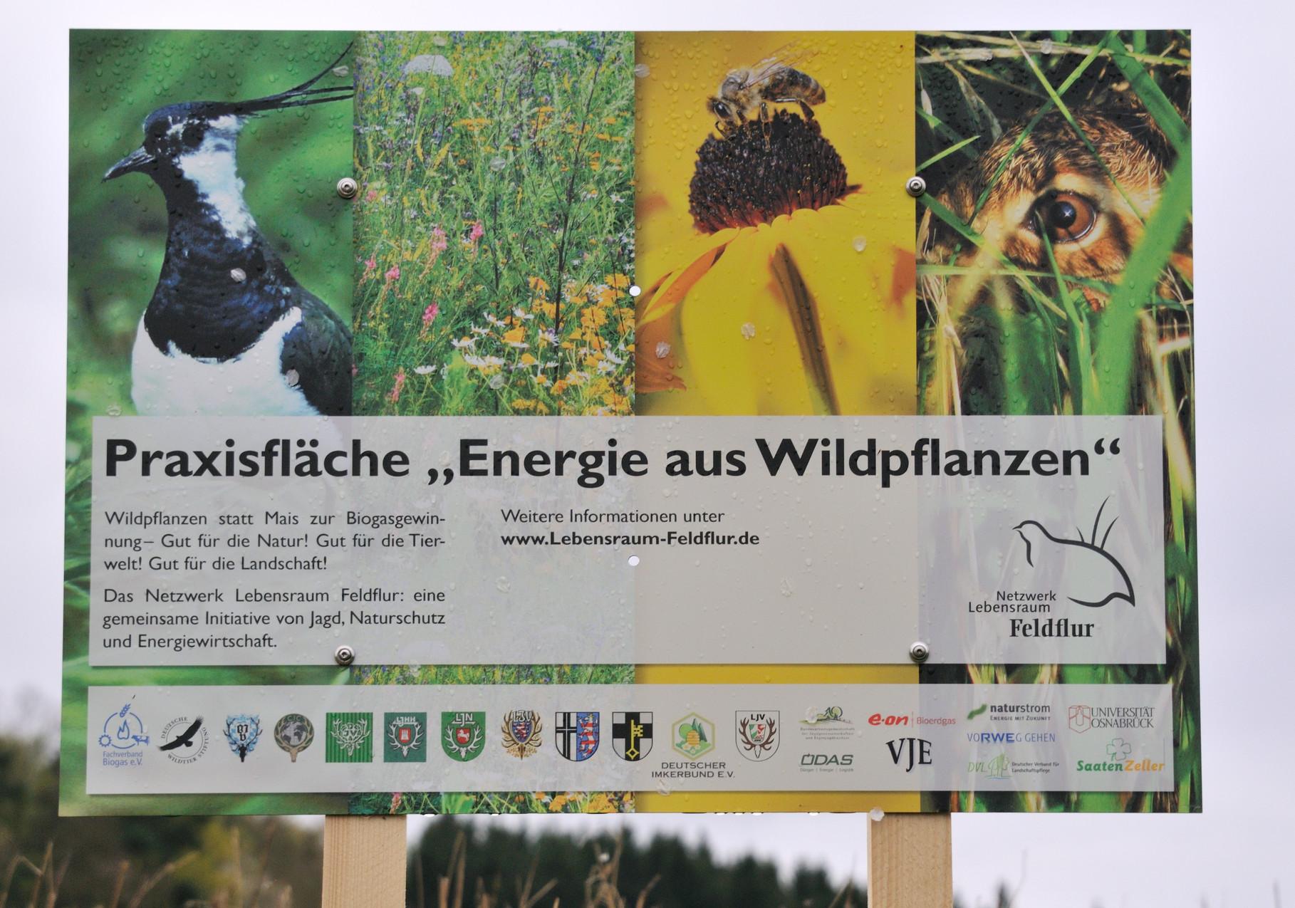 Diskussion und Fortbildung zu alternativen Energiepflanzen