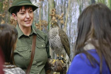 Die deutsche Falknerei gehört zu den immateriellen UNESCO-Kulturgütern - der Deutsche Falkenorden (DFO) ist mit lebenden Greifvögeln am DJV-Stand vertreten. Quelle: DJV