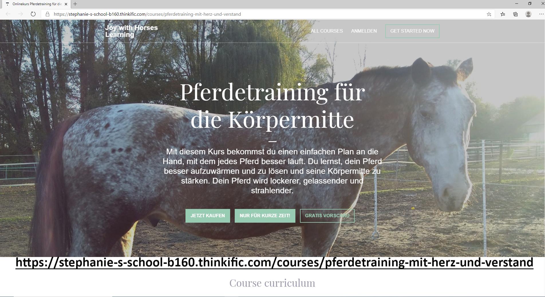 Pferdetraining für die Körpermitte