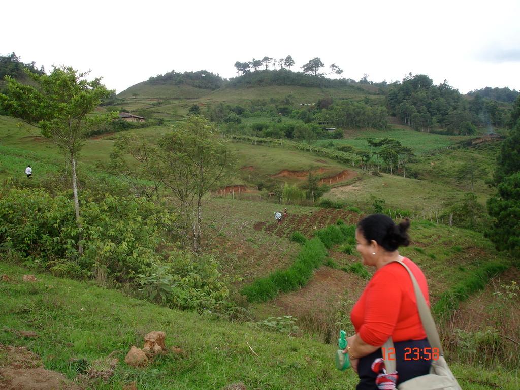 Besuch der ALIANZA ECOCAFEH auf der Pflanzung eines Kooperativenmitglieds