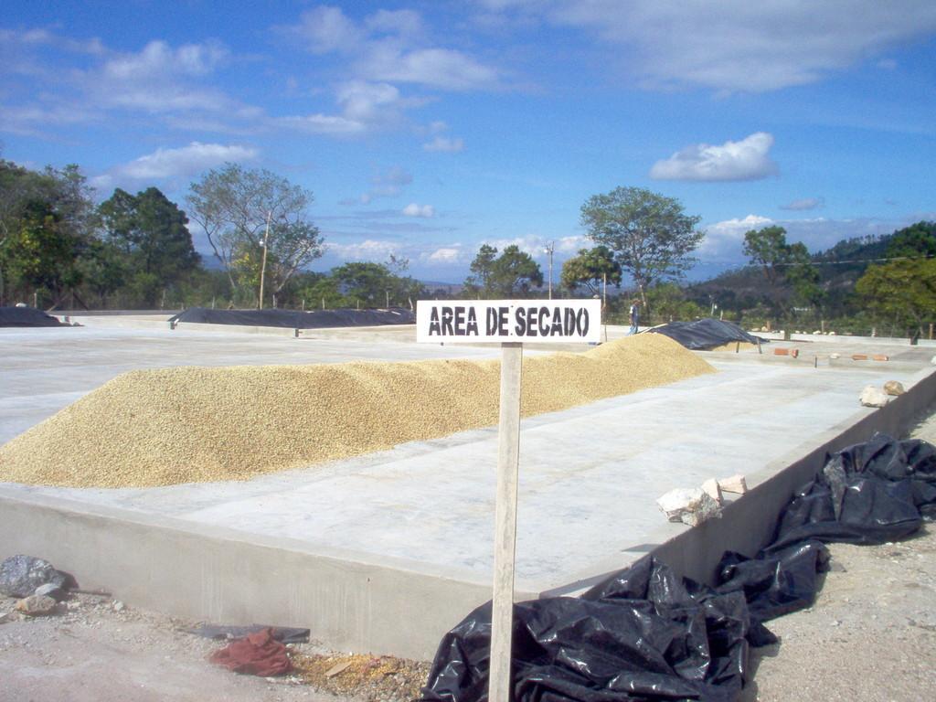 Trockenhof für Biokaffee von COMUCAP
