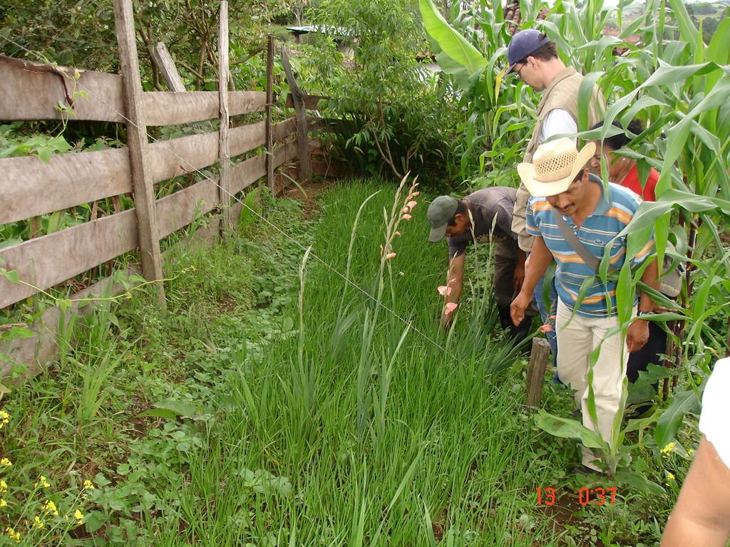 Besuch beim Lauch-Garten eines Kooperativenmitglieds