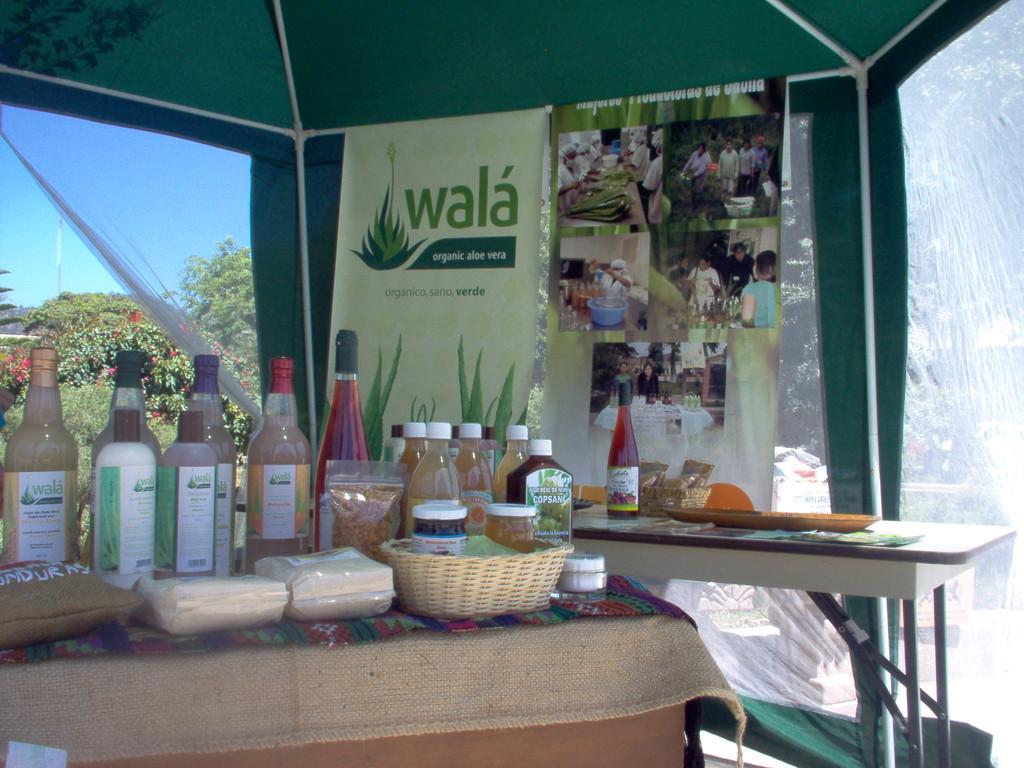 Aloevera-Produkte, Marke Wala,  auf dem Marcala-Festival, März 2010