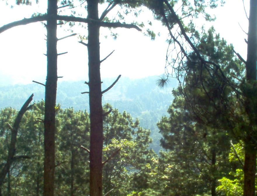 Ausblick vom Berghotel von COMUCAP