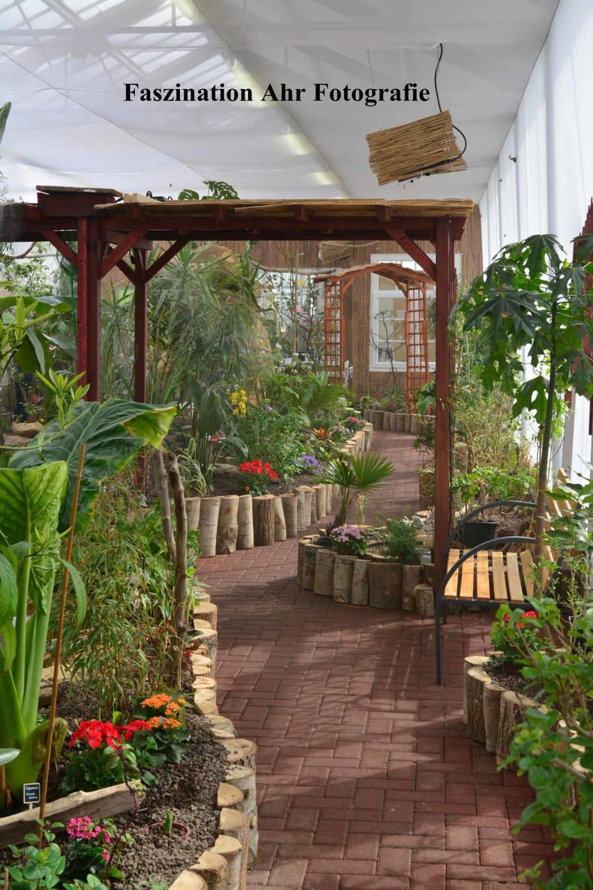 Liebevoll angelegter Garten