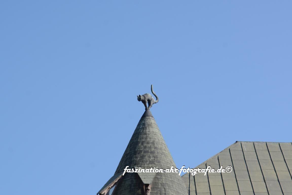 Die Katze auf dem Dach