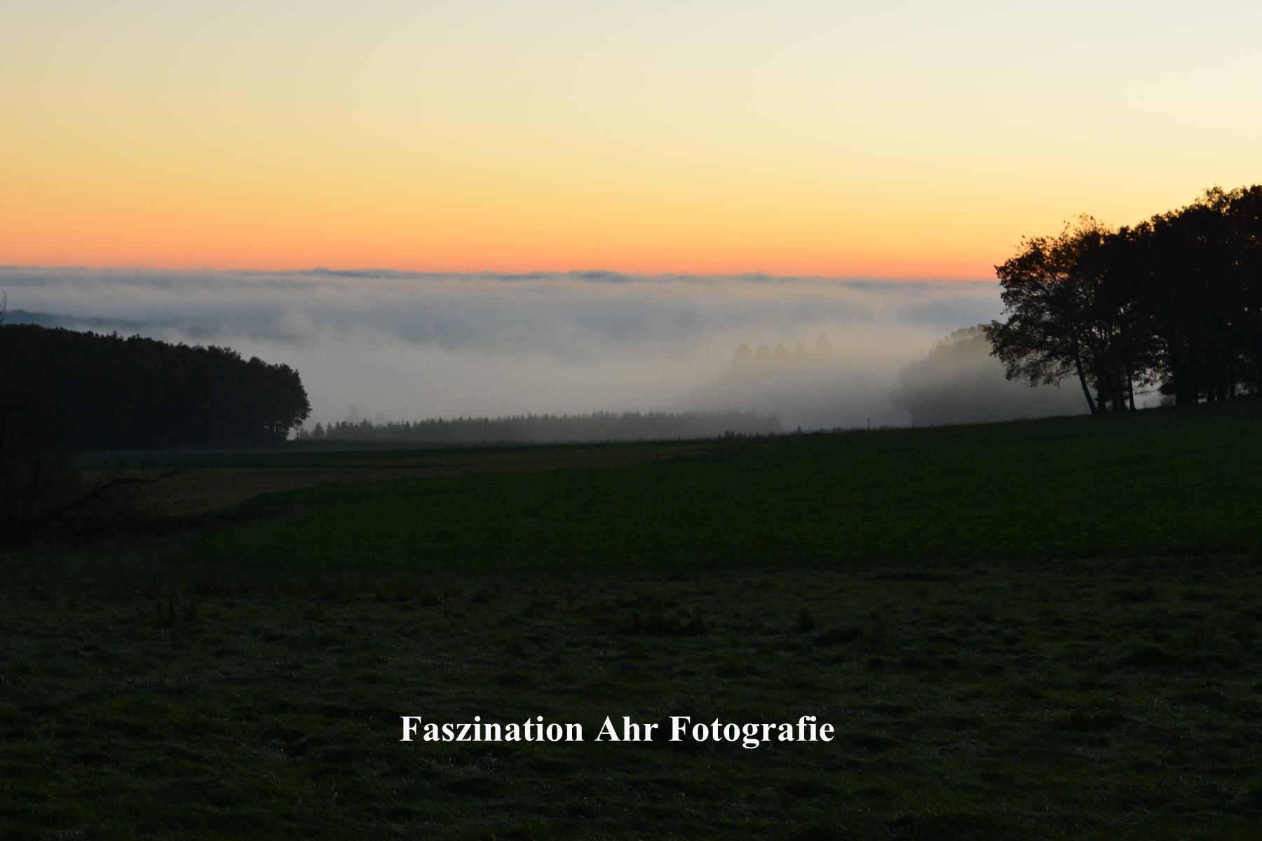 Morgendliche Herbstbilder2
