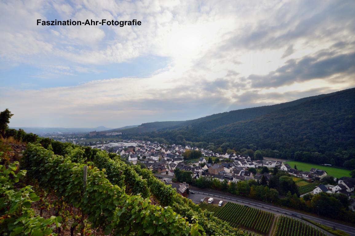 Der Blick zurück auf Walporzheim und Ahrweiler