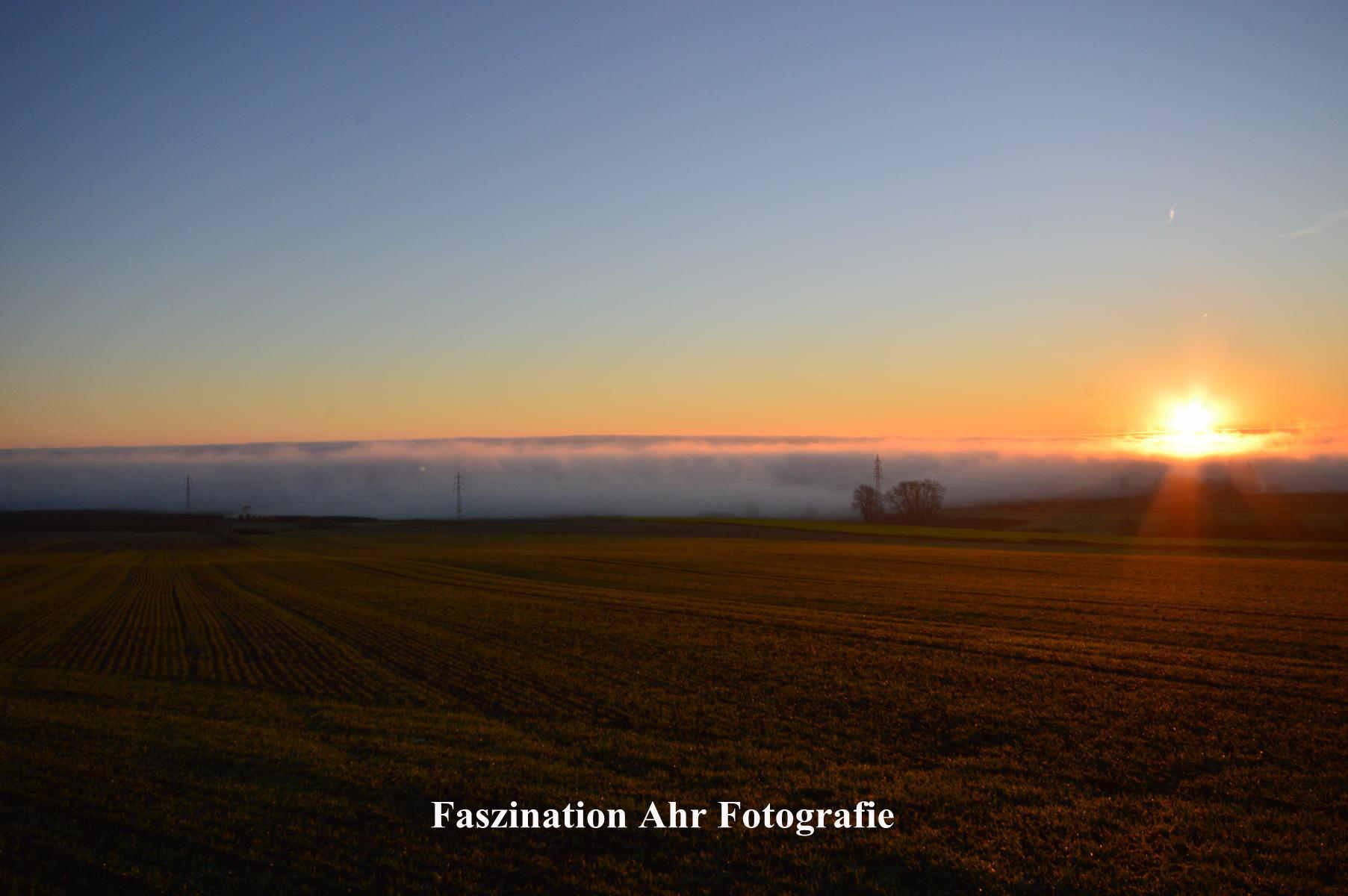 Esch unter Nebel