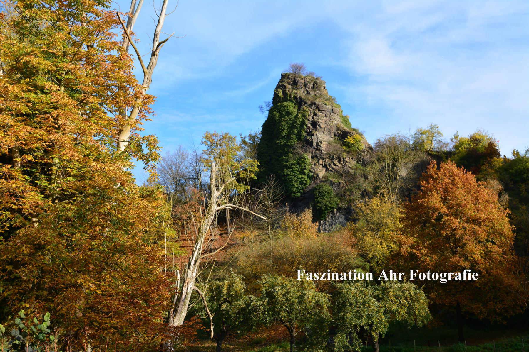 Herbstbilder15
