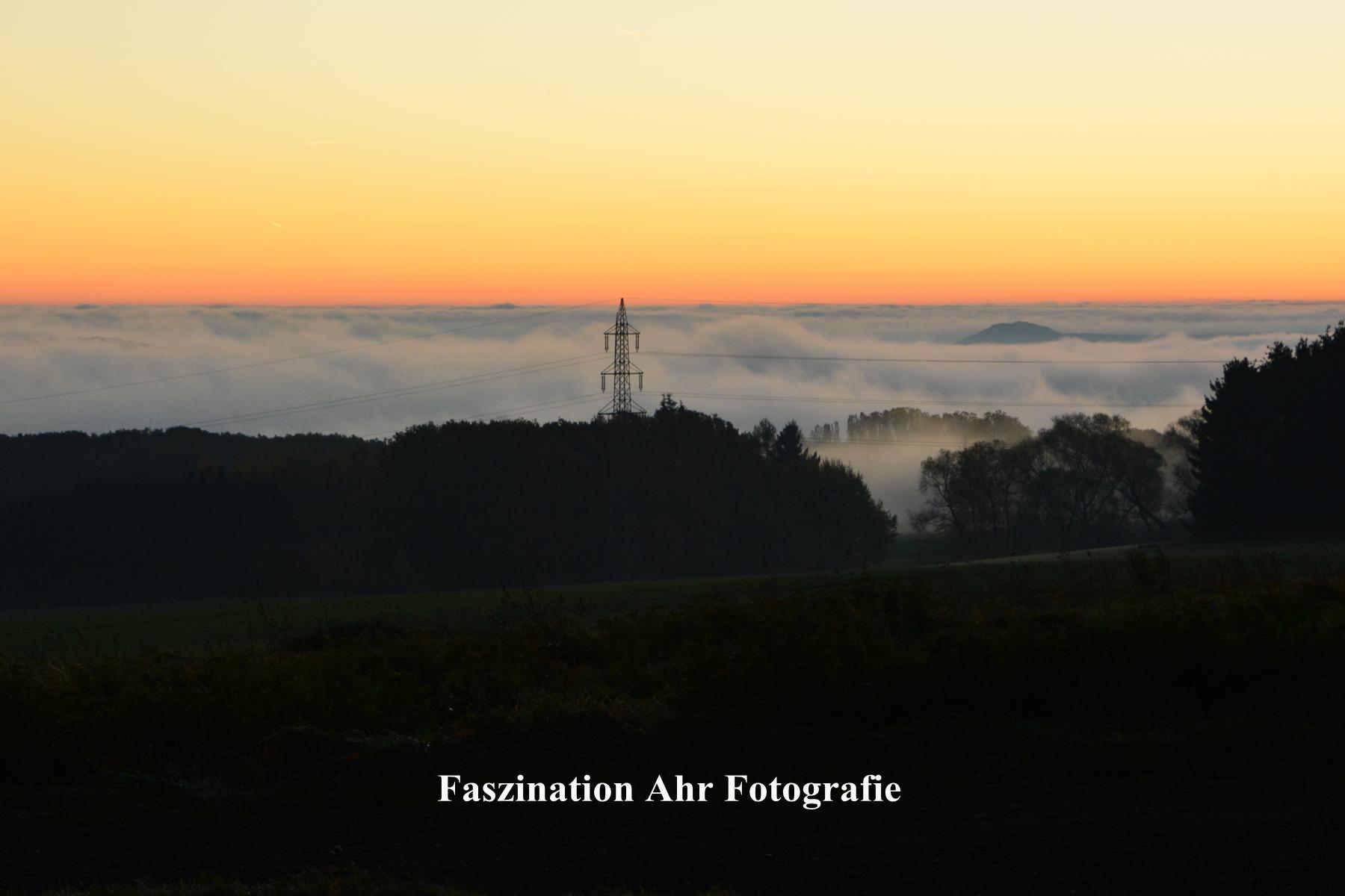 Morgendliche Herbstbilder1