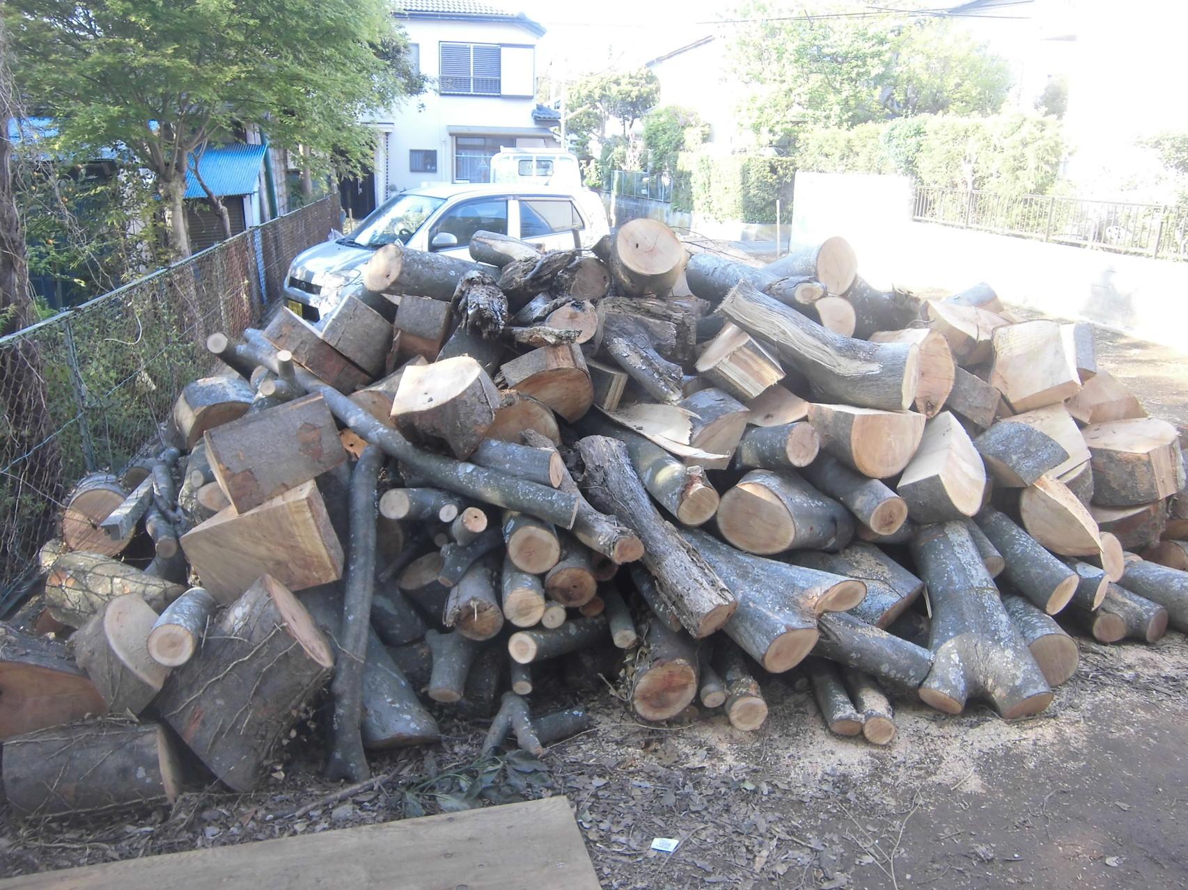 伐採2日目(伐採した枝、幹)