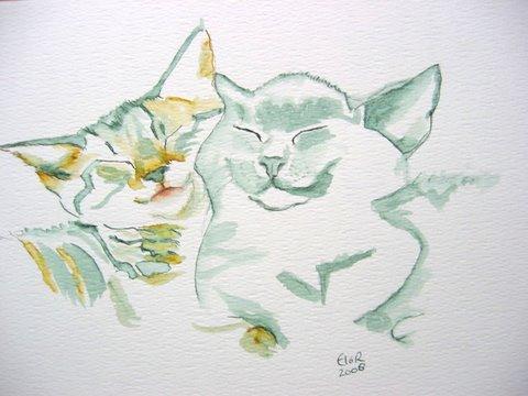 Kittens; 43x33 cm incl. lijst (papier)