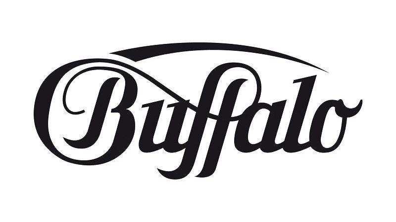 CheckEinfach | Bildquelle: buffalo.de