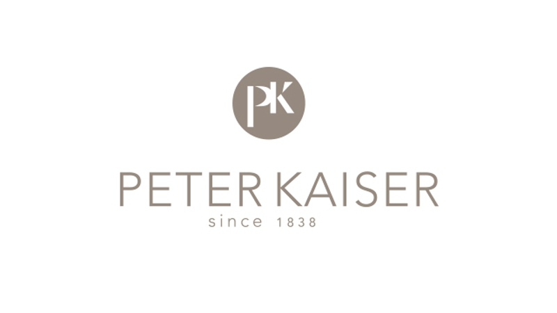 CheckEinfach | Peter Kaiser Logo