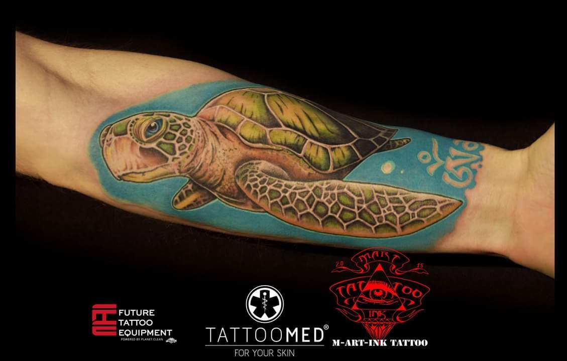 Schildkröte / Color / Tattoo / Realistic / Terminbuchung