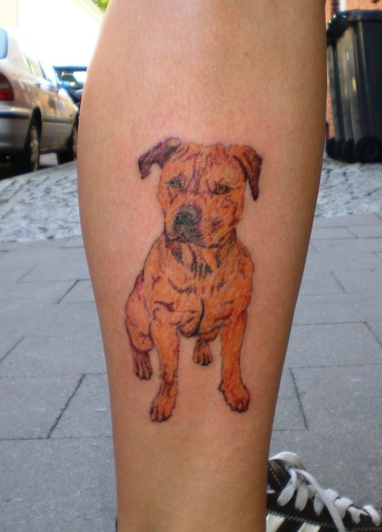 Hunde Portrait Tattoo Greifswald