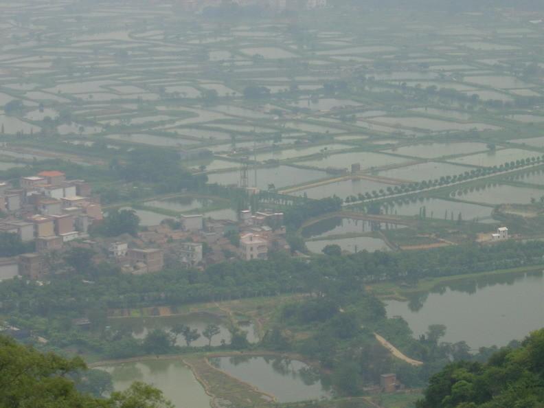 Smog durch Wasserflächen, Hitze und Verschmutzung