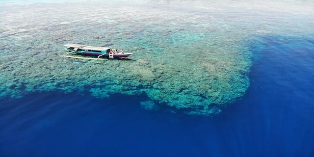 Klick hier: Togian Islands