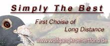 Banner-Wolfgang