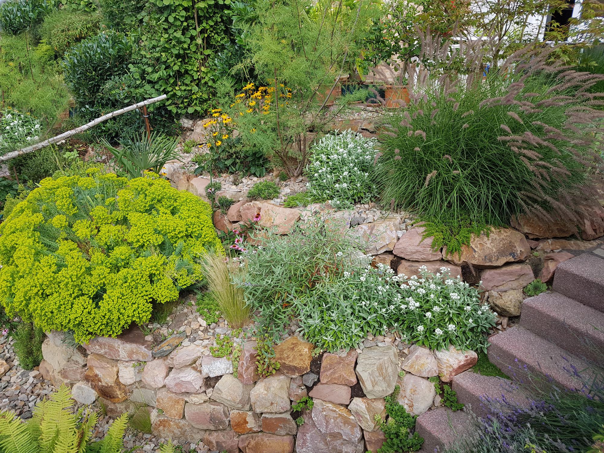 Steine im Vorgarten