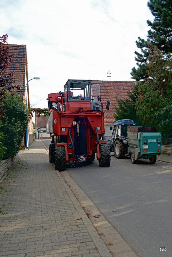 Neustadt Weinstraße / Duttweiler - Trabenernter und Winzertrecker