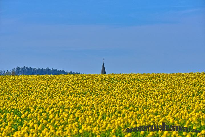 Frühjahr in Breuna