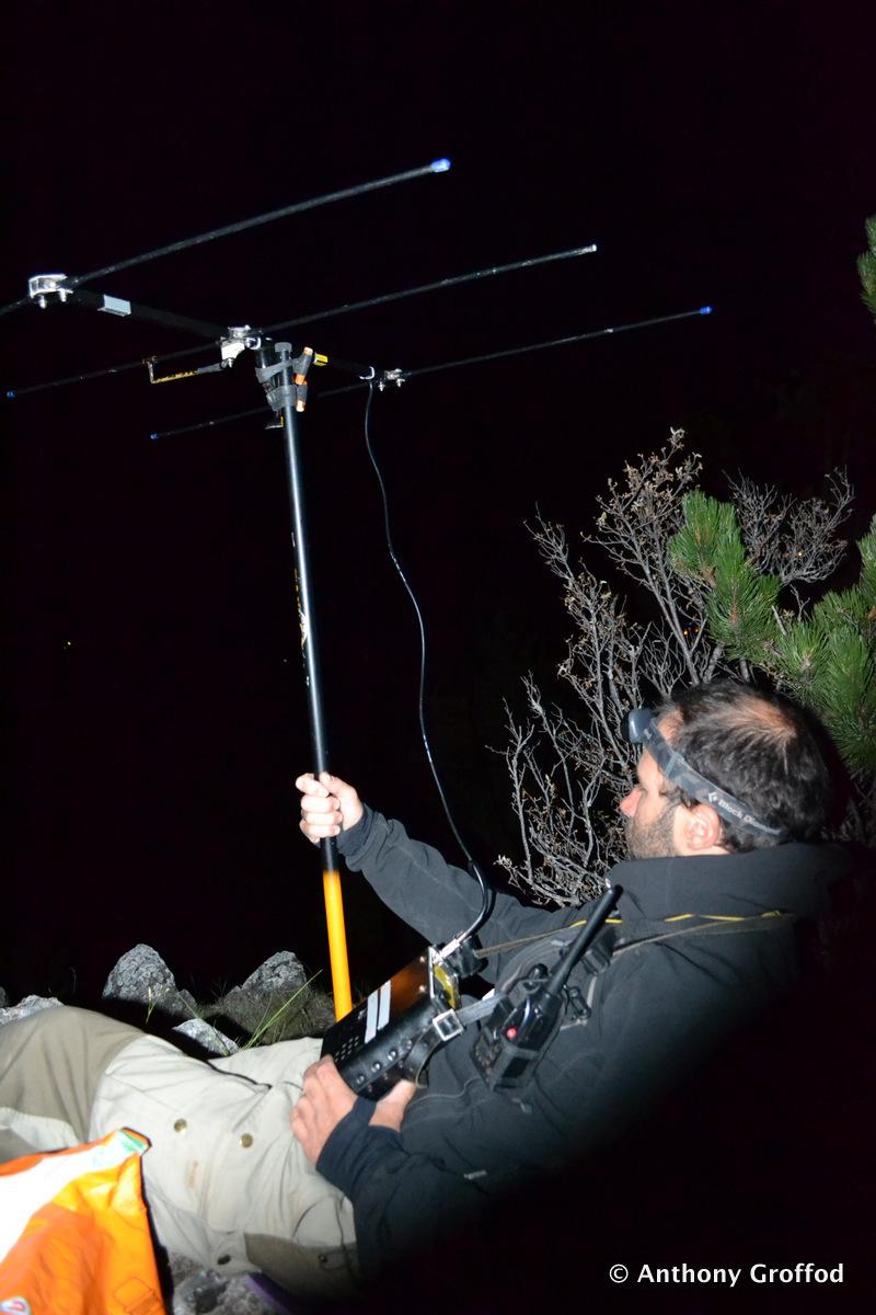 Recherche des signaux radio des individus équipés d'émetteurs