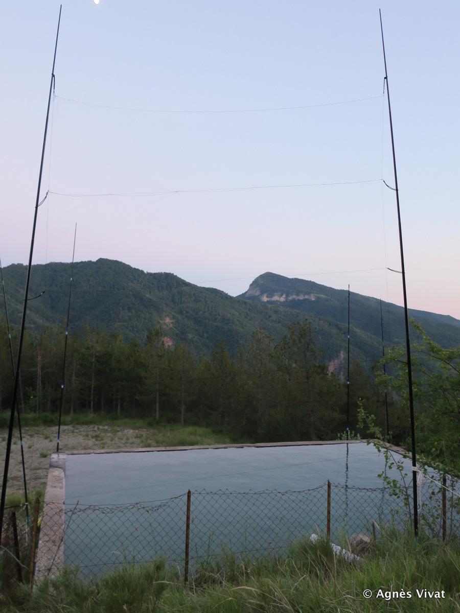 Capture sur un réservoir d'eau avec filets japonais tendus entre des perches
