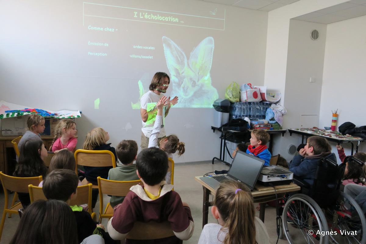 Découverte des chauves-souris avec les enfants du centre de loisirs l'Eterlou à Chorges
