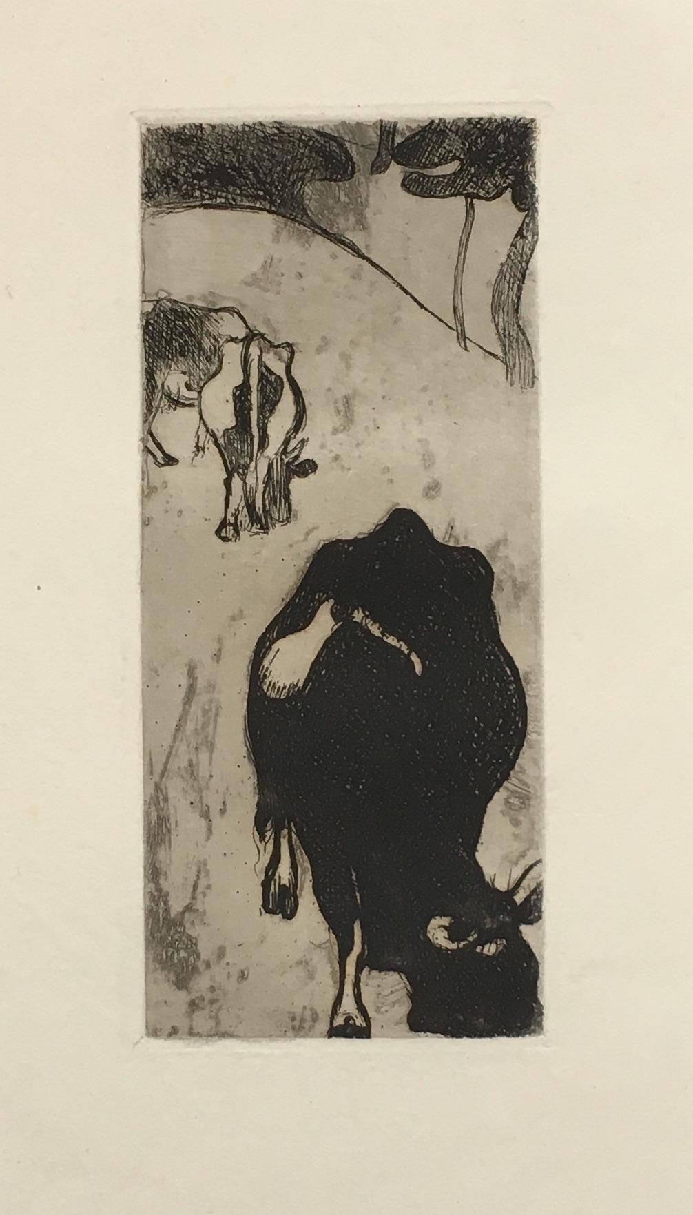 Cuno Amiet, Kühe (Bretagne), Radierung, 1893