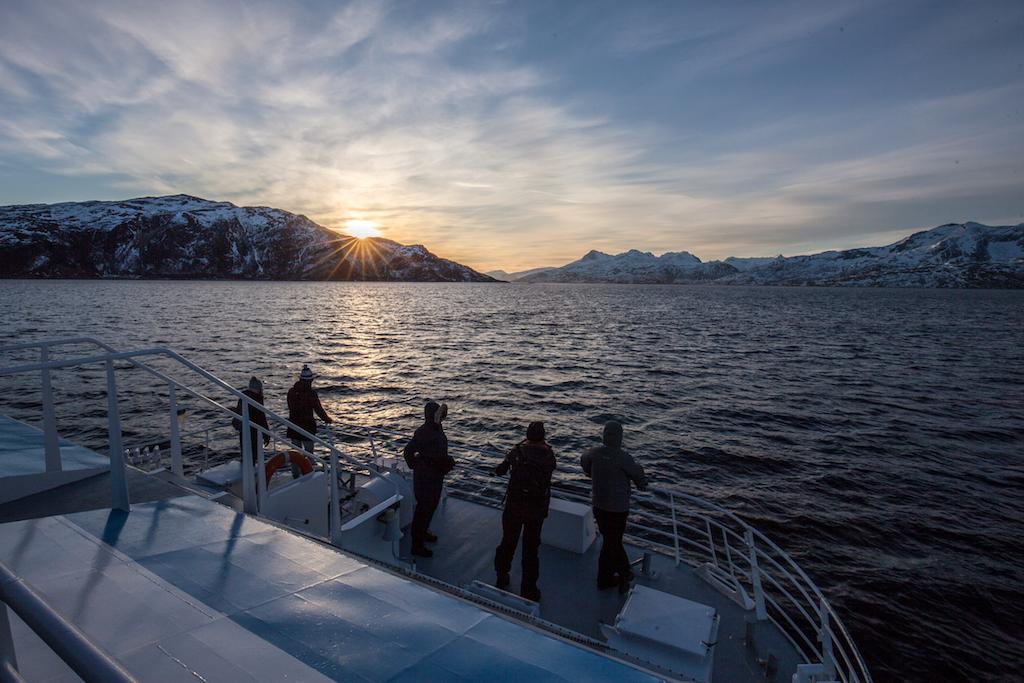 Sehenswürdigkeiten in Tromsø: Fjord Cruise
