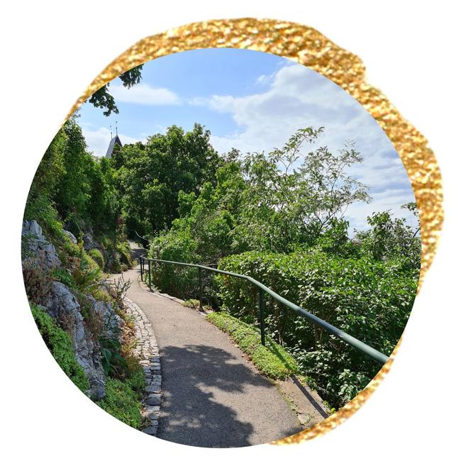 Coaching-Spaziergang am Grazer Schlossberg
