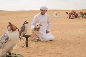 Auf den Spuren der Beduinen - Falknerei