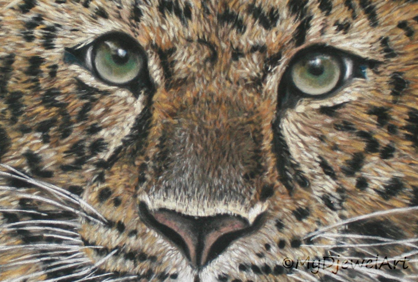 Detail Amur Leopard op suèdekarton