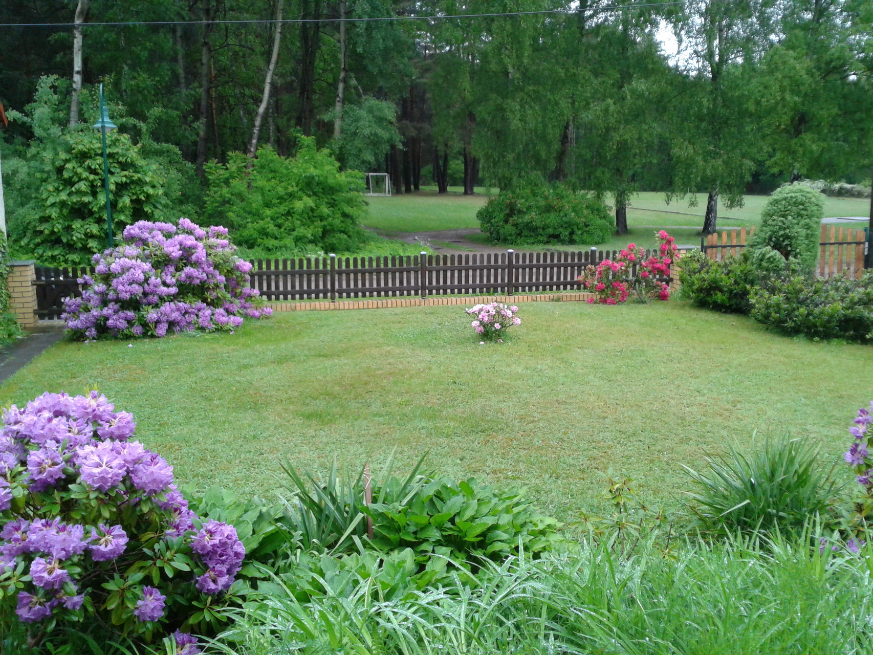 Vorgarten mit Blick in den Wald