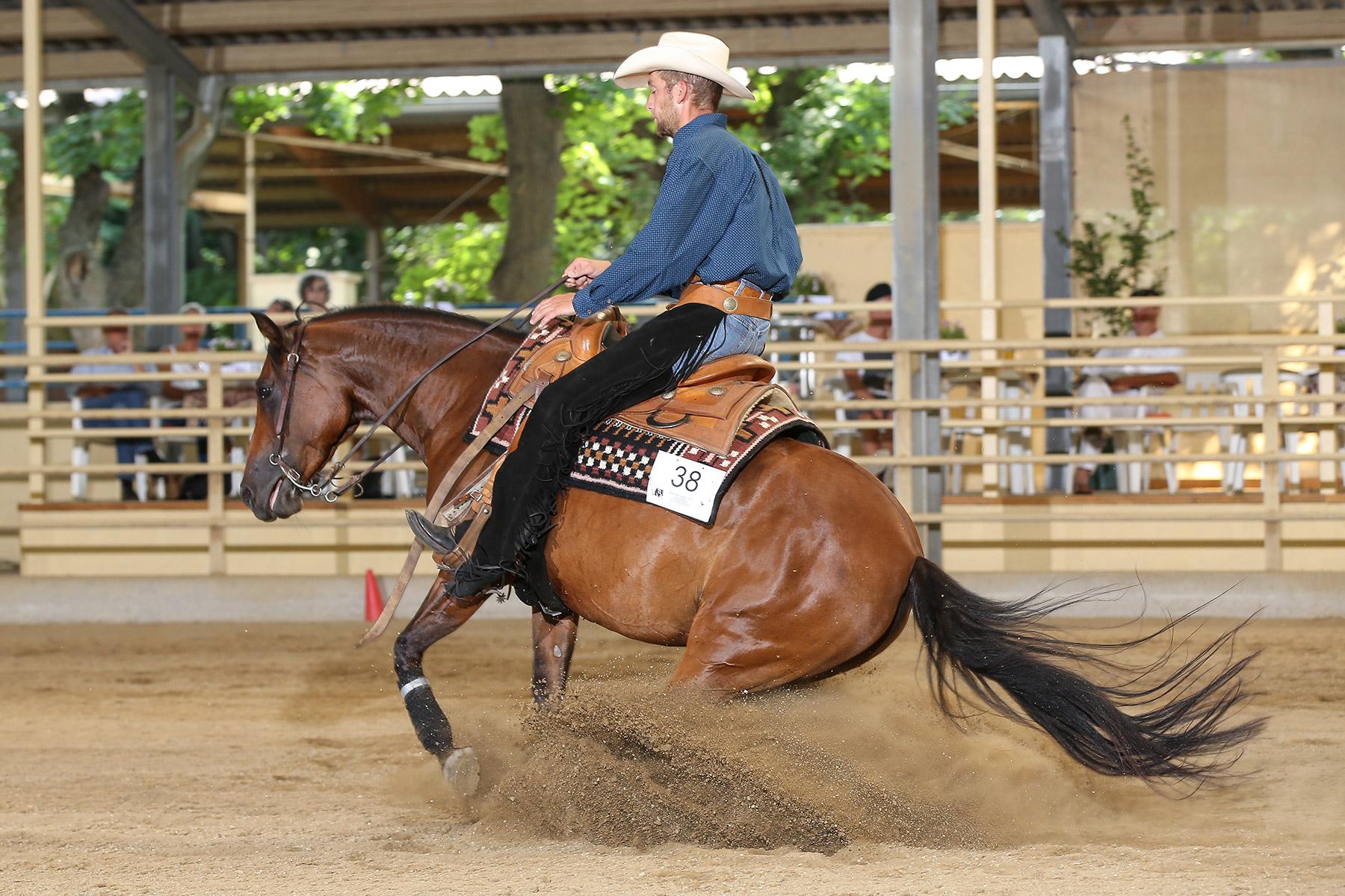 Reini Hochreiter qualifizierte sich mit drei Pferden des Gut Fronleitenhofs für die EM. Hier mit DU Kharousel. Foto: CK Photographics