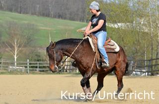 Reinhard Hochreiter hält Reining-Kurse und gibt Reitunterricht für Reining-Reiter.