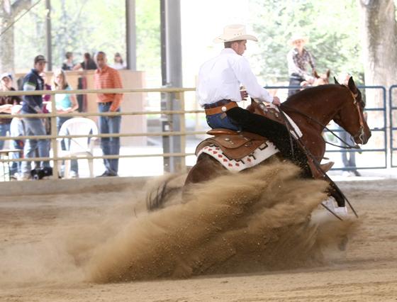 Bei jeder Reining sind mindestens 3 Sliding Stopps zu machen. Foto: CK Photographics