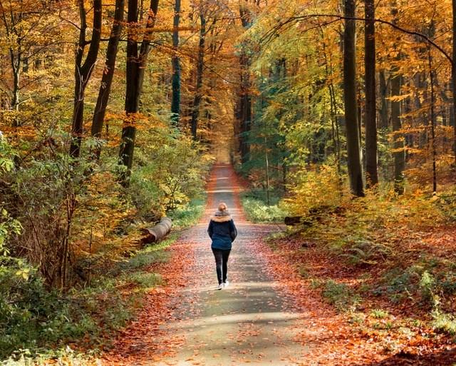 Frau Wald Spaziergang meditative Entspannungsübung