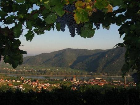 Weissenkirchen im Herbst