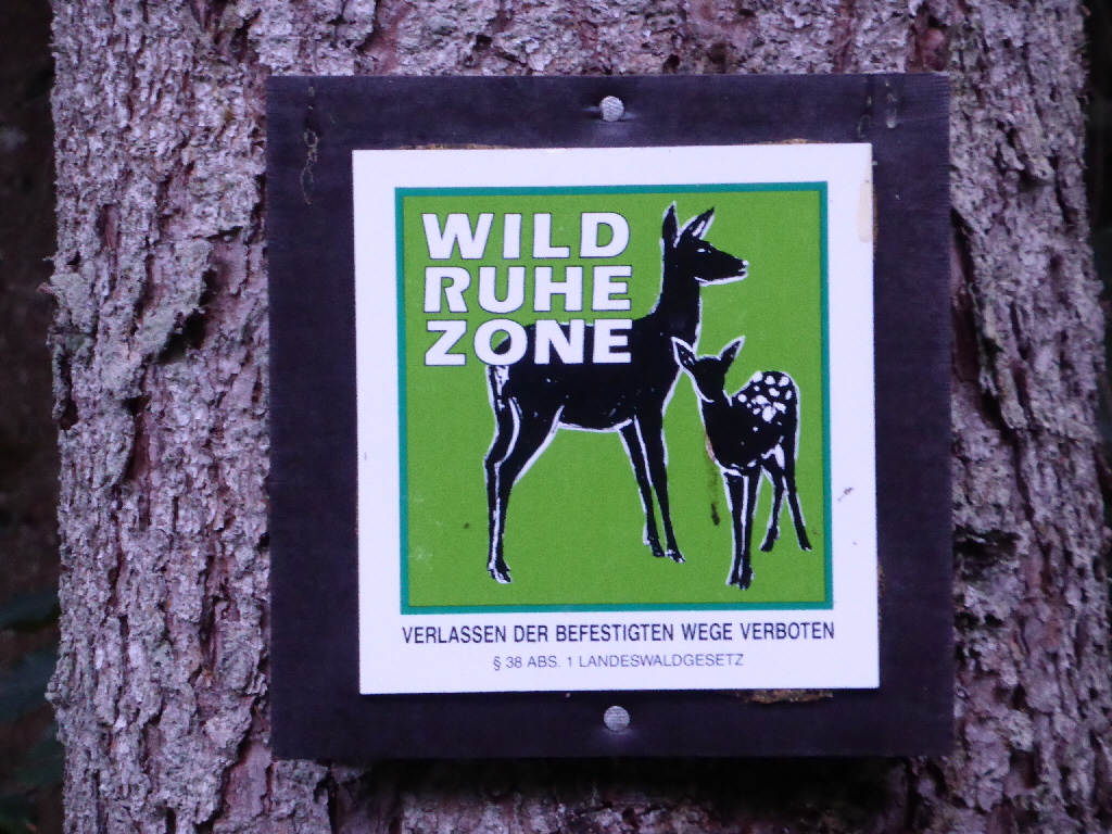Wildruhezone