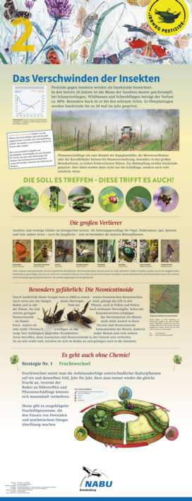 02 Das Verschwinden der Insekten