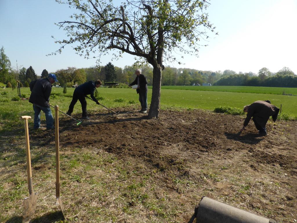 Vorbereiten und Einsäen der Blumenwiese