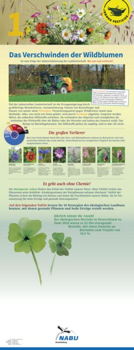 01 Das Verschwinden der Wildblumen