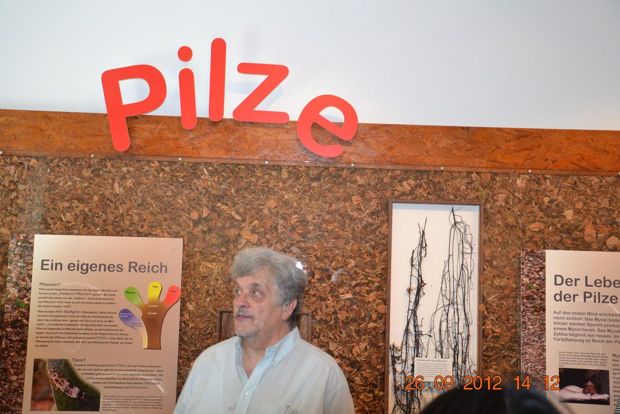 Beginn der Ausstellung, fachliche Erklärungen von Hr. Ing. Sueti!