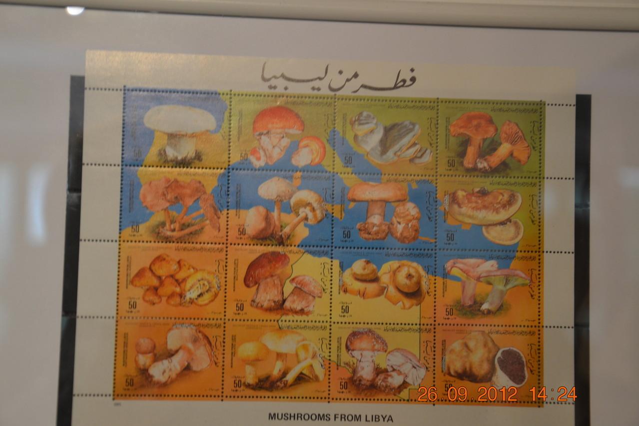 ...interessante Briefmarken mit Seltenheitswert...